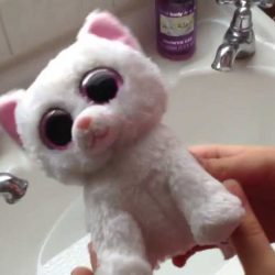How to Wash your Beanie Boos!