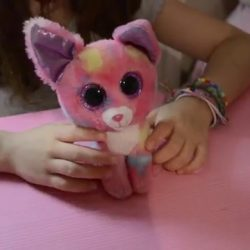 Video review de los PELUCHES TY BEANIE BOOS