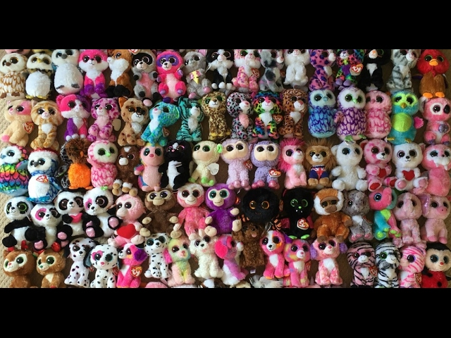 My Beanie Boo Collection! 525e1d21895